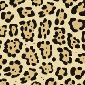 animal print jaguar