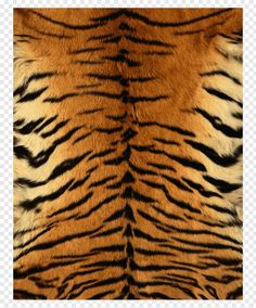 animal print tigru